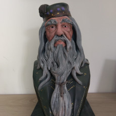 Picture of print of Albus Dumbledore Bust This print has been uploaded by David Maeseele