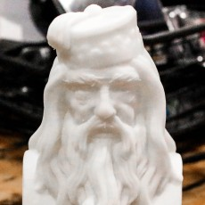 Picture of print of Albus Dumbledore Bust This print has been uploaded by John Hache