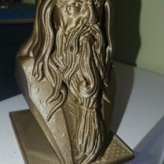 Picture of print of Albus Dumbledore Bust This print has been uploaded by Brett
