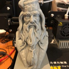 Picture of print of Albus Dumbledore Bust This print has been uploaded by Wayne McCormick