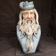 Picture of print of Albus Dumbledore Bust This print has been uploaded by CHAOSMakers