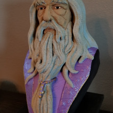 Picture of print of Albus Dumbledore Bust This print has been uploaded by Brannon Pate