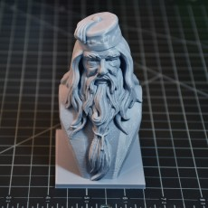 Picture of print of Albus Dumbledore Bust This print has been uploaded by Steve Smith