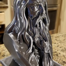 Picture of print of Albus Dumbledore Bust This print has been uploaded by Ryan Hill