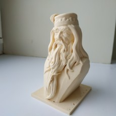 Picture of print of Albus Dumbledore Bust This print has been uploaded by Ivan Egorov