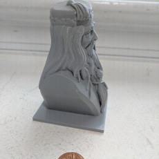 Picture of print of Albus Dumbledore Bust This print has been uploaded by Ellswor