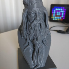 Picture of print of Albus Dumbledore Bust This print has been uploaded by Flávio Afonso