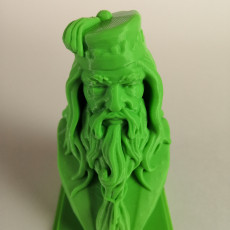 Picture of print of Albus Dumbledore Bust