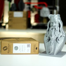 Picture of print of Albus Dumbledore Bust This print has been uploaded by 3DPrintingTips