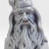 Albus Dumbledore Bust image