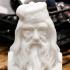 Albus Dumbledore Bust print image