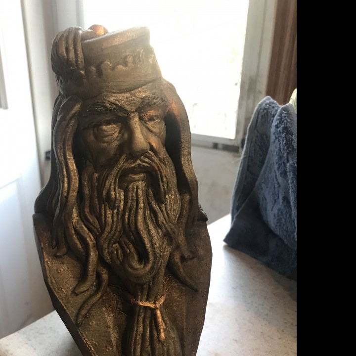 Picture of print of Albus Dumbledore Bust This print has been uploaded by Adam Stype