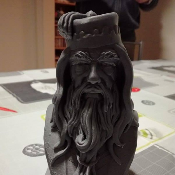 Picture of print of Albus Dumbledore Bust This print has been uploaded by Jo Pirard