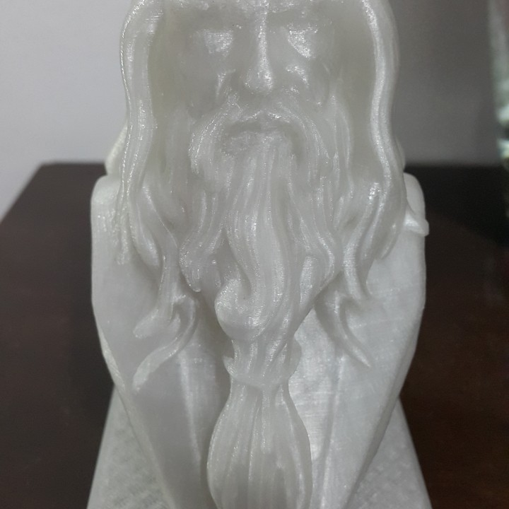 Picture of print of Albus Dumbledore Bust This print has been uploaded by Paulo Soares