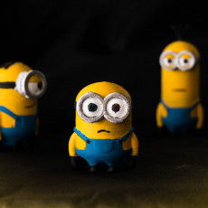 Picture of print of Minion Movie Trio