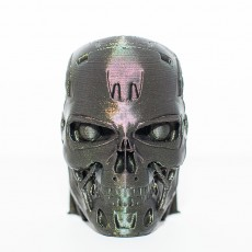 Picture of print of T-800 Terminator Skull