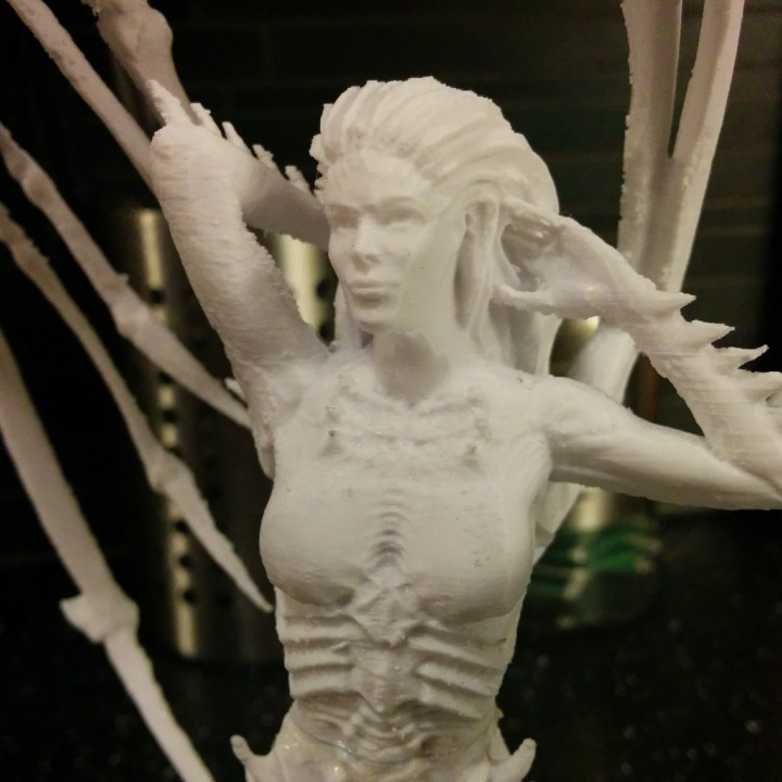 Picture of print of Starcraft KERRIGAN statue This print has been uploaded by Peter Zippert