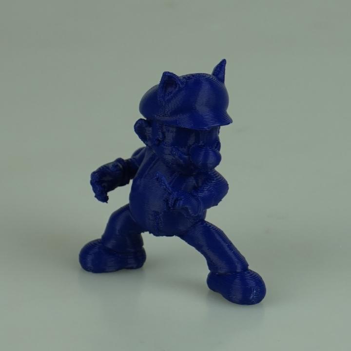 Super Mario Raccoon