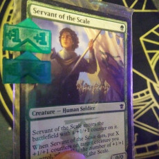 Picture of print of Magic The Gathering Counter Clips