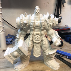 Picture of print of Thrall from Heroes Of The Storm!