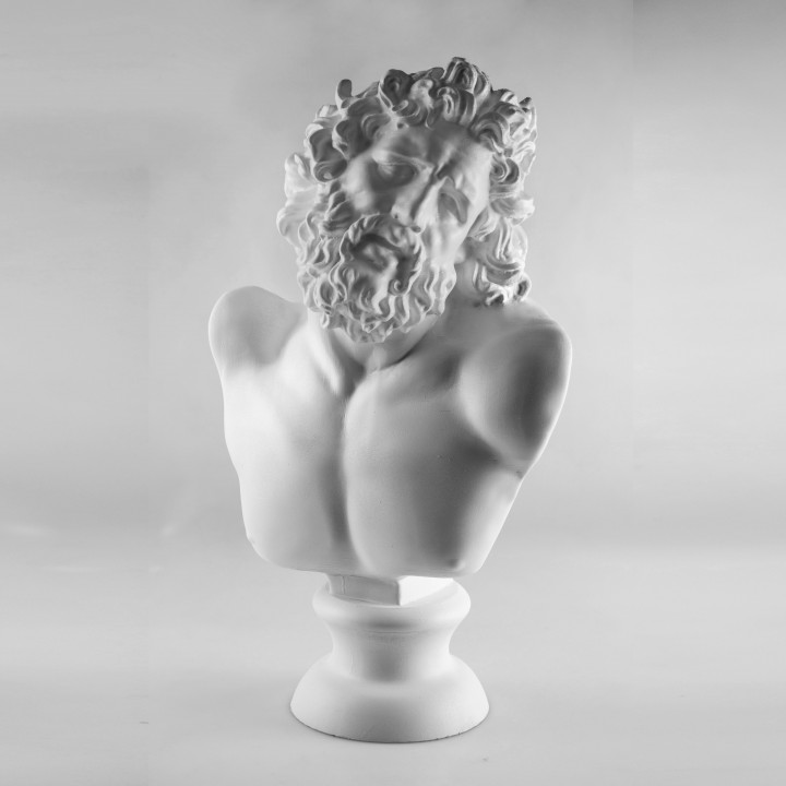 Picture of print of Head of Laocoon at The Réunion des Musées Nationaux, Paris Dieser Druck wurde hochgeladen von Scan The World