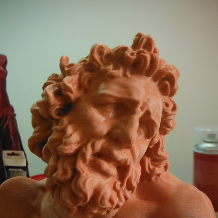 Picture of print of Head of Laocoon at The Réunion des Musées Nationaux, Paris Dieser Druck wurde hochgeladen von Guido Maurizio