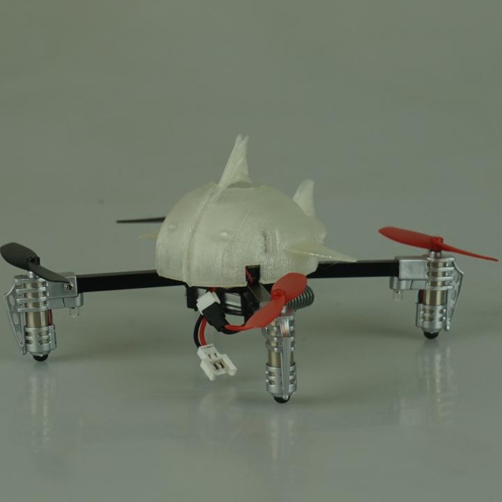 Sky Predator Drone