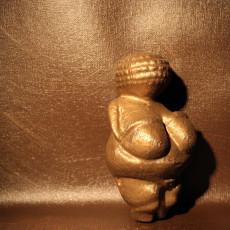 Picture of print of Venus of Willendorf at The Naturhistorisches Museum, Vienna, Austria