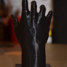 Picture of print of Hand of Adam at The Rodin Museum, Paris