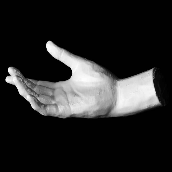 Hand of Adam at The Rodin Museum, Paris