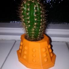 Dalek Cactus Head