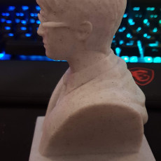 Picture of print of Harry Potter Bust