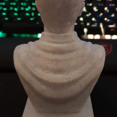 Picture of print of Harry Potter Bust This print has been uploaded by John Kelly