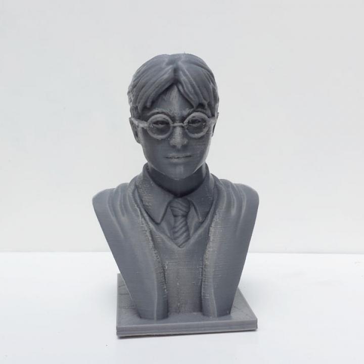 Harry Potter Bust