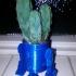 R2D2 Cactus Head image