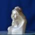 Bust of Marianne (Catherine Deneuve) at The Réunion des Musées Nationaux, Paris print image