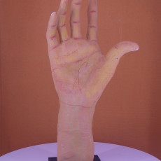 Picture of print of Right Hand of Pierre and Jacques de Wissant at The Musée Rodin, Paris