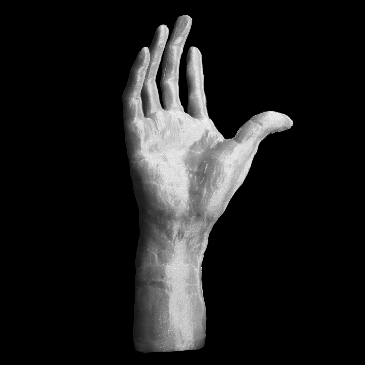 Right Hand of Pierre and Jacques de Wissant at The Musée Rodin, Paris