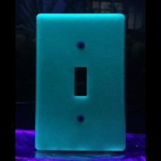 Picture of print of Glow-In-The-Dark 3D Printed Light Switch Frame