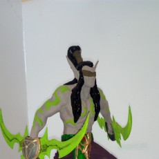 Picture of print of Illidan from Heroes Of The Storm!