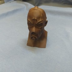 Picture of print of Borderlands Psycho Bust
