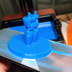 Picture of print of Ring holder