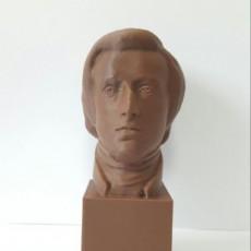 Picture of print of Chopin at The Réunion des Musées Nationaux, Paris
