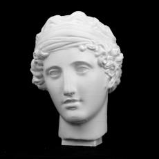 Head of Aphrodite at The Reunion des Musees Nationaux, Paris
