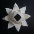 Radiant Blossom print image