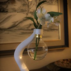 Picture of print of Vase from a Lightbulb - Art Deco Style 这个打印已上传 Caryanne Toting