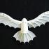 DaVinci's flying kite print image