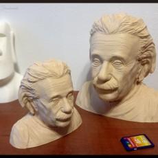 Picture of print of Einstein Bust (14K)