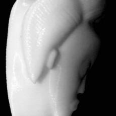 Egungu Mask at The British Museum, London