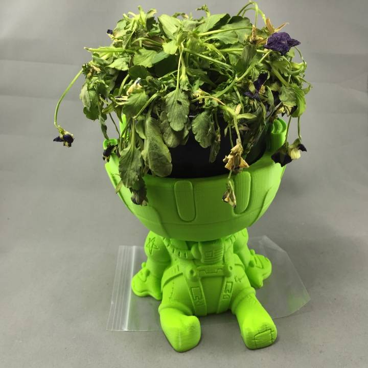 Lazy Astronaut planter